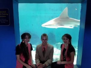 Real Shark!