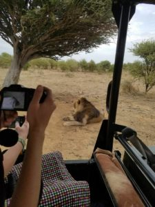 In the safari.  They came very close to lions.  Scary!